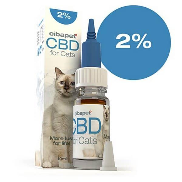 CBDenzo CBD olie kat 2% 10ml Cibapet, katten, doosje met flesje, more lust for live