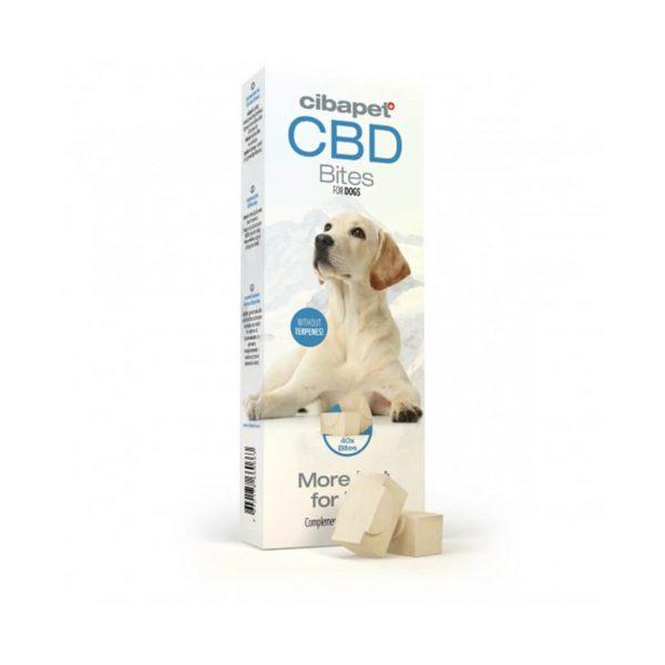 CBDenzo CBD Snacks snoepje Hond 3,7mg doosje Cibapet 40st cbd schapenvet knoflookpoeder olijfolie