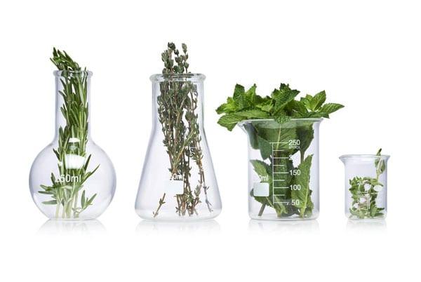 glazen potten of flessen met kruiden