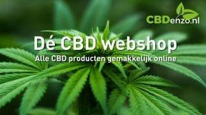 CBD enzo de cbd webshop alle cbd producten en merken gemakkelijk online. Contact pagina van CBDenzo